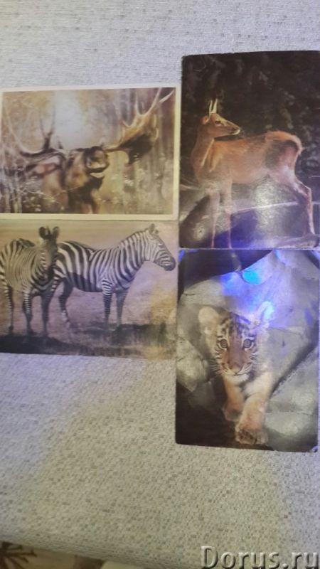 Коллекция открыток - Искусство и коллекционирование - Реализуем коллекцию открыток с изображение В..., фото 6